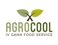 IV gama food service