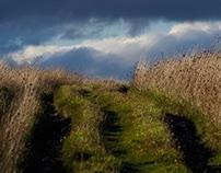 Südengland Landschaft