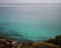 Coastal Dreaming