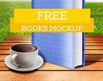 Picnic Books Mockup Free