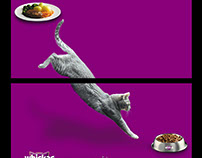 Billboard: Whiskas - Cats know the difference