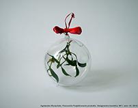 Design Christmas