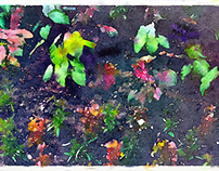 Flower Impression