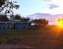 Masai Mara full CGI