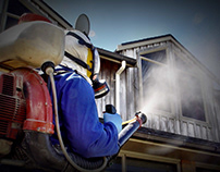 Best Tips To Hire A Pest Control Company