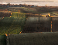 Early spring. Polish fields.