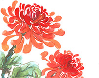 Chrysanthemum, painted in gouache.