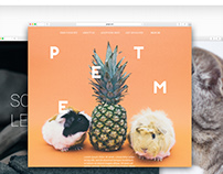 Web Visual Design : Petme