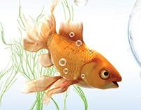 """TVC: BGŻ BNP Paribas (""""Złota rybka""""/""""Goldfish"""")"""