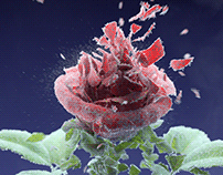 Wooli - Roses Remix