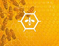 """Логотип и иконки для компании """"Апистар"""""""