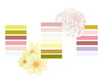 Spring Palette Concepts