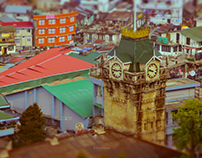 Darjeeling — tea and trains