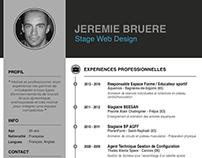 Curriculum Vitae/Resume (Fr En)