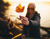 fallen leaves | Hanna