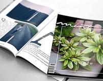 Mint magazine