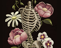 Spine Meadow / Illustration