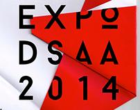 Expo DSAA