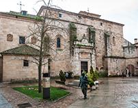 Zamora - Rain