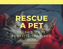 Rescue a Pet