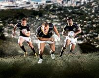 Wellington Lions 2016 Poster
