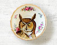My dear Owl