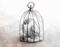 Bajka syryjska o wróblu i łasiczce