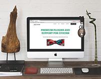 BRANDING AND WEBSITE DESIGN | CIVIVIP