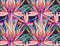 TROPICAL SEAMLESS PATTERN. STRELITZIA