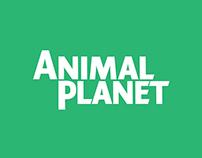 Animal Planet Rebranding