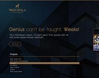 Wadi Degla Development website concept