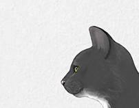 Compass / cat
