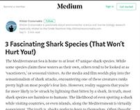 3 Shark Species - Alistair Economakis