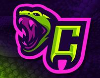 Cobras Branding Project