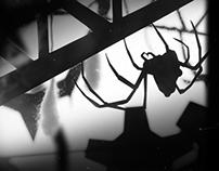 Bug Stories