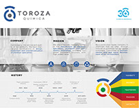 Infographic / TOROZA Química (Company Overview)