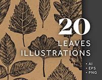 20 Leaves Illustrations