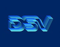 DSV GUIDELINE