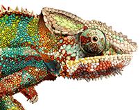 chameleon art Illustration