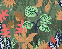 Illustration monstera/jungle - vector