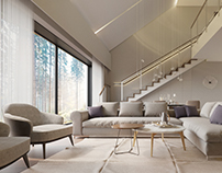 Modern house / interior