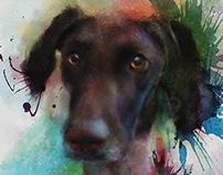 Dog Watercolor for Bev