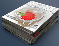 Diseño y maquetación de catálogo para MOMA