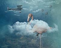 Über den Wolken | Above the clouds