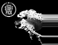 Contour & Shape | STAFF PICK