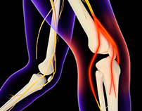 Knee Animation