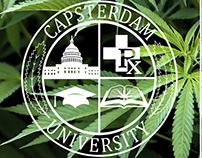 Capsterdam Seminar Ad 2016