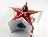 Lace and Glass star book