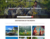 Website design for travel agency