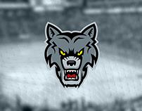 Astana Wolves (Hockey team)